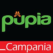 Youtube Pupia Campania
