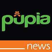 Youtube Pupia News