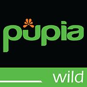 Youtube Pupia Wild