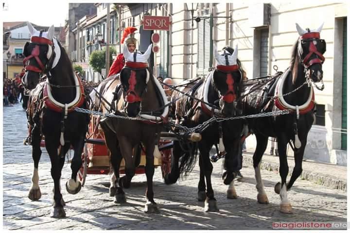 Frignano processione Addolorata (3)