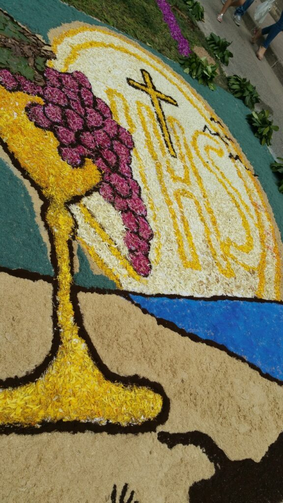 Mondragone – Infiorata 2015 (8)