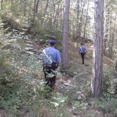 bosco carabinieri