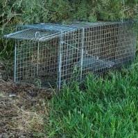 trappola caccia