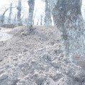 galluccio terreno (1)