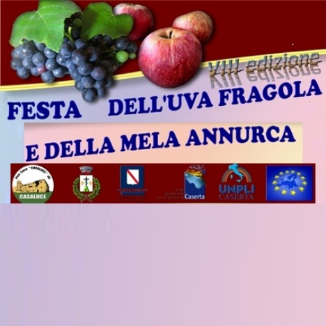 casaluce festa uva fragola 2016 (1)