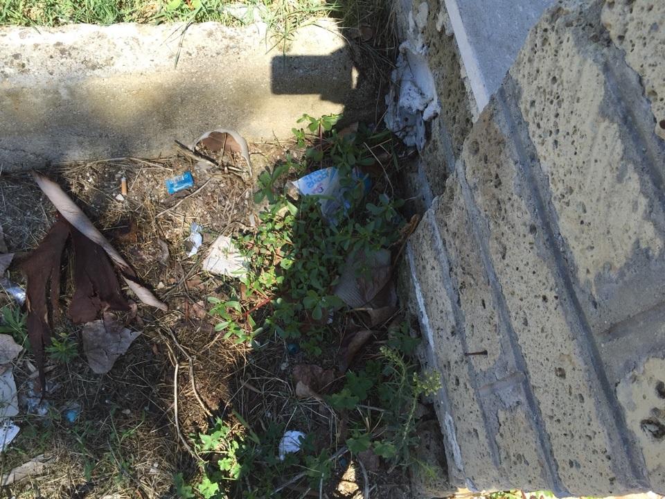 trentola scuola rifiuti (1)