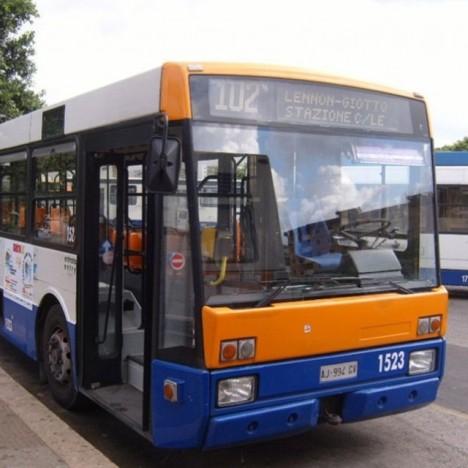amat-autobus