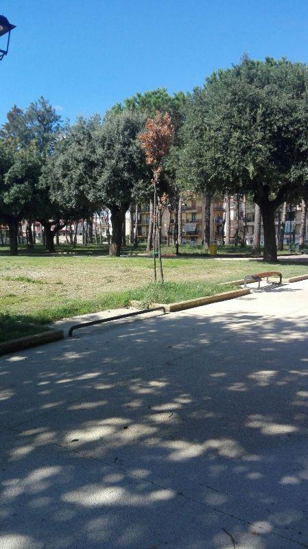 parco pozzi degrado (16)