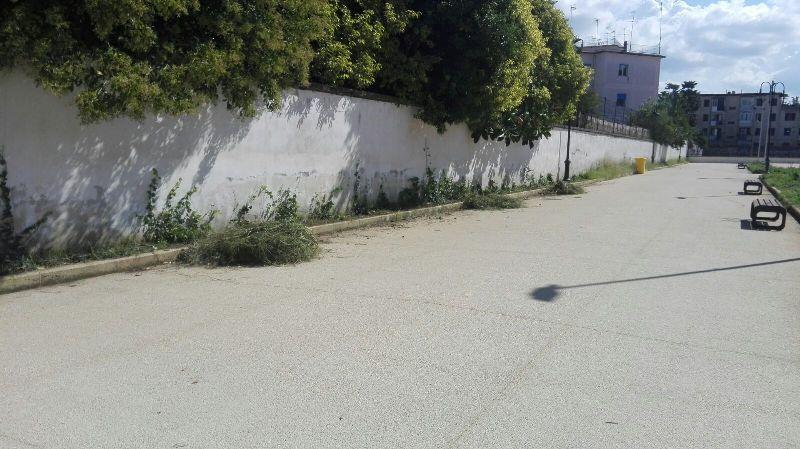 parco pozzi degrado (4)