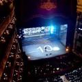 maradona show