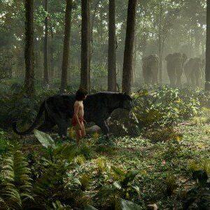 India come ne il libro della giungla trovata bimba che for Come costruire una palestra nella giungla