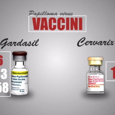 report vaccini