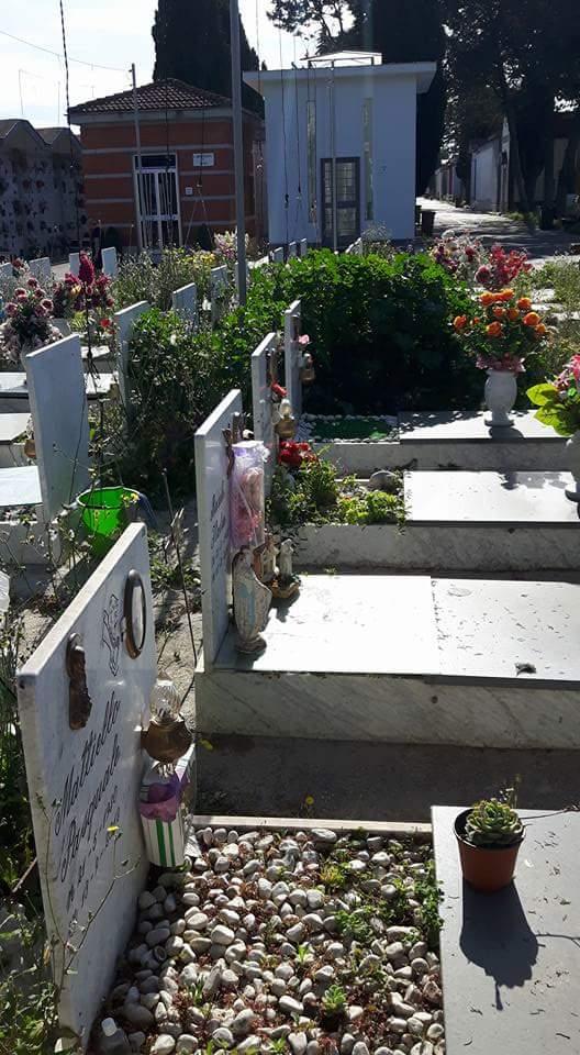 cimitero aversa erbacce (10)