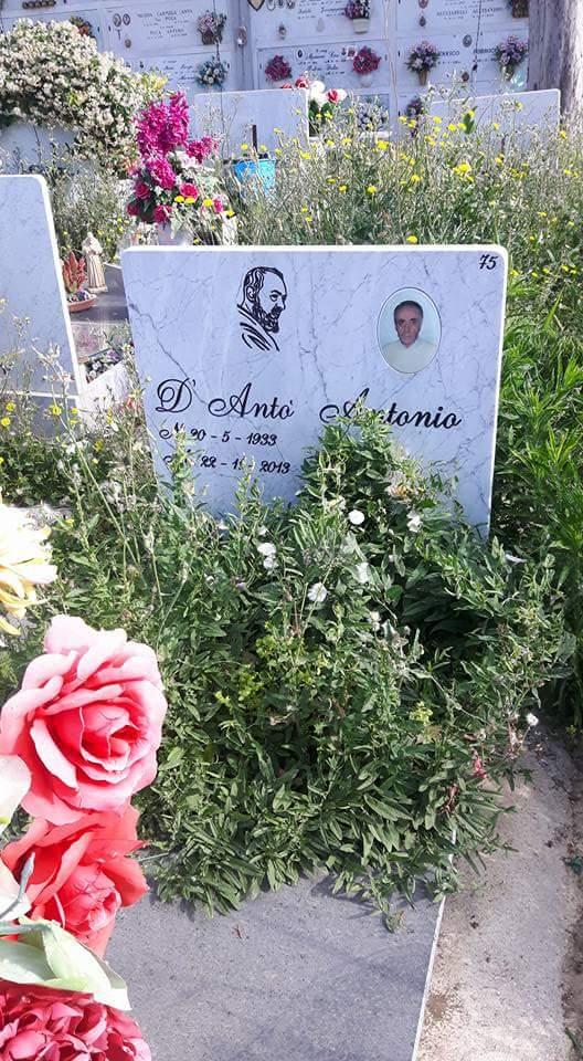 cimitero aversa erbacce (2)