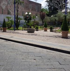 cesa fioriere (4)