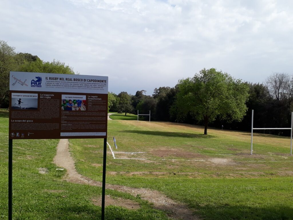 area_rugby_vuota