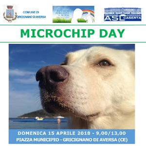 microchip day gricignano 2018