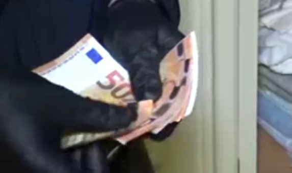 soldi 50 euro