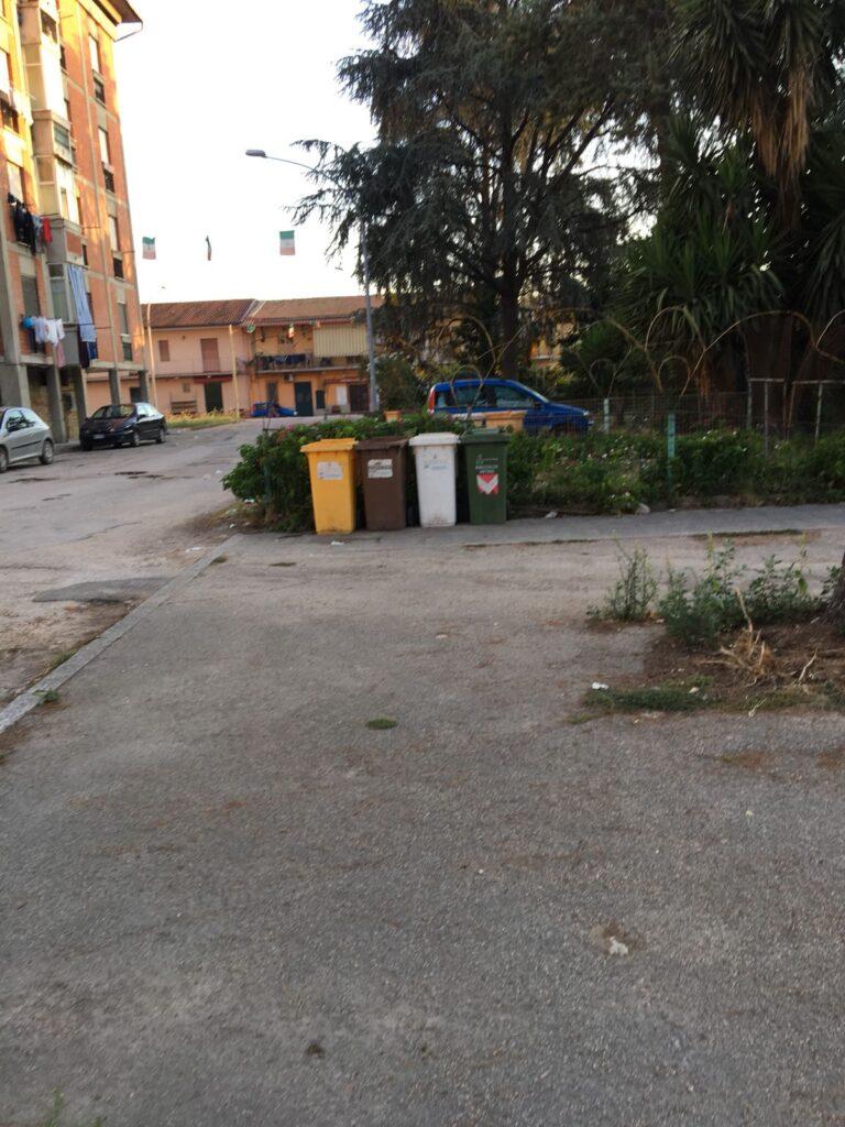 rifiuti pulizia piazza concordia (2)