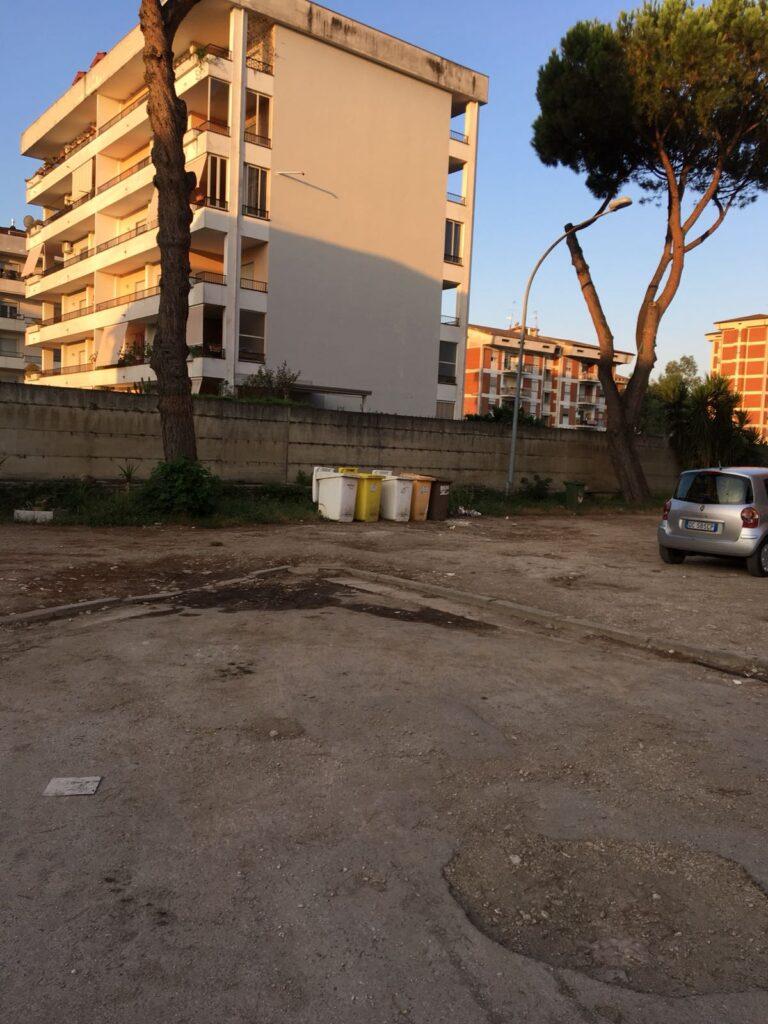 rifiuti pulizia piazza concordia (3)