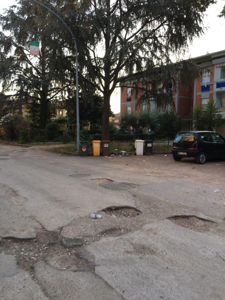 rifiuti pulizia piazza concordia (4)