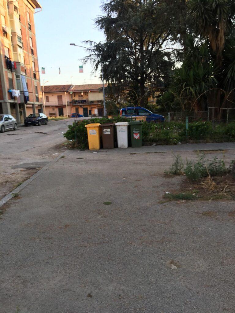 rifiuti pulizia piazza concordia (5)
