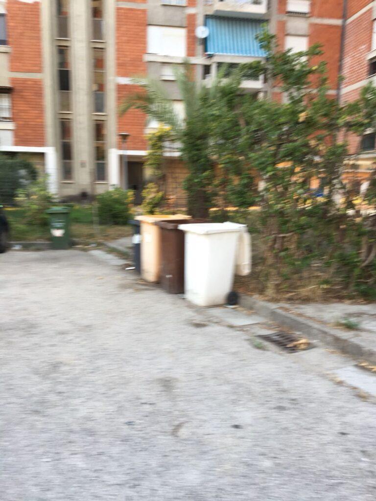rifiuti pulizia piazza concordia (6)