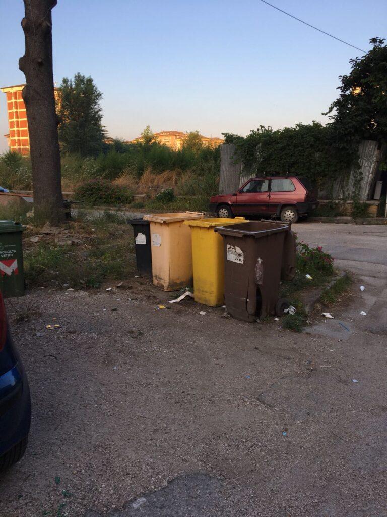 rifiuti pulizia piazza concordia (8)