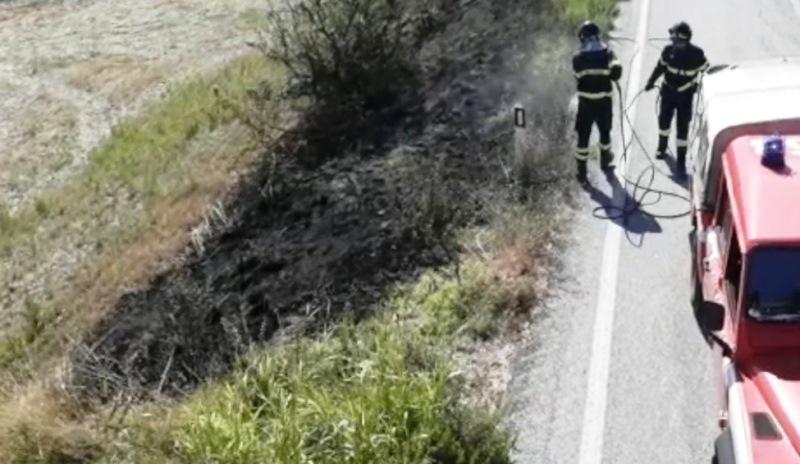 incendio vegetazione rogo