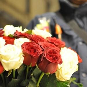 venditore rose