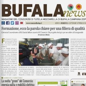 bufala news