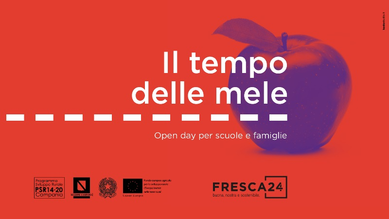 fresca24 (1)