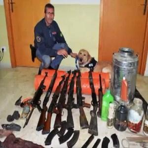 armi paceco