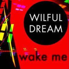 wake me wilful dream