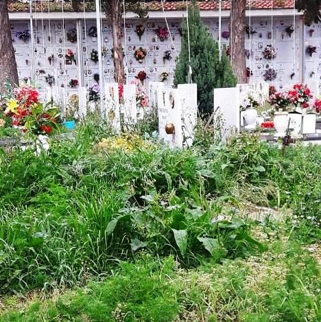 cimitero aversa (2)