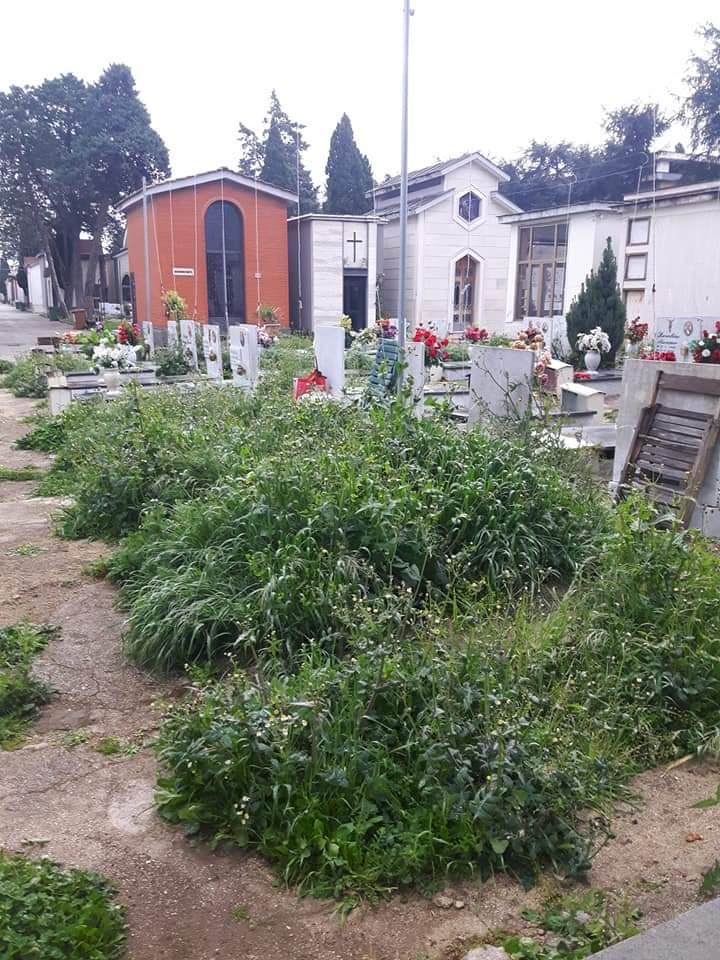 cimitero aversa (4)