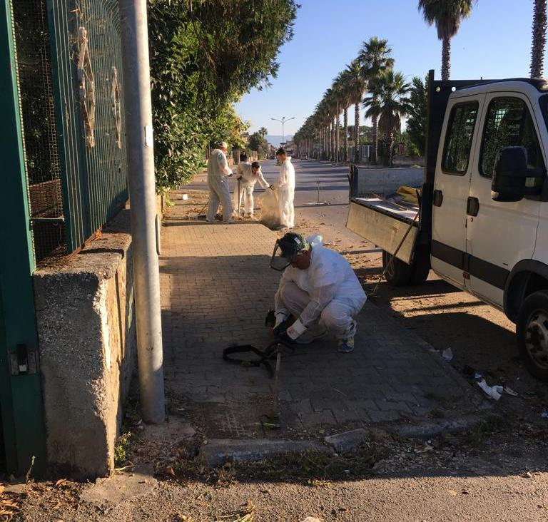 gricignano pulizia senesi (8)