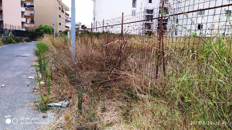 rifiuti via campo (1)