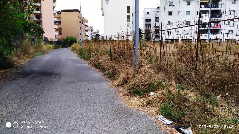 rifiuti via campo (5)