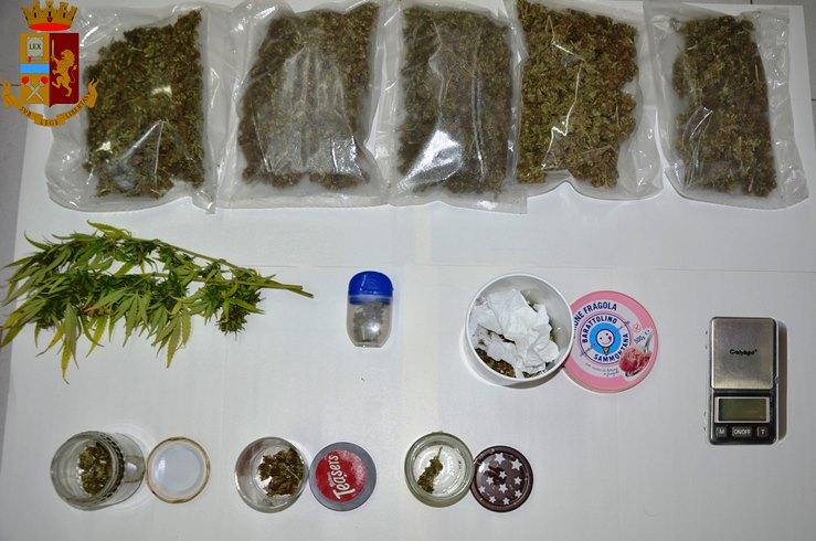 casagiove marijuana (1)