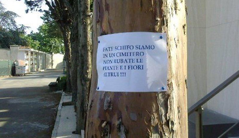 cartello_schifo2