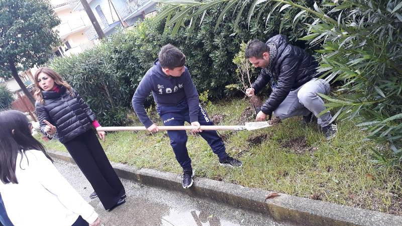 gricignano festa albero 2019 (5)