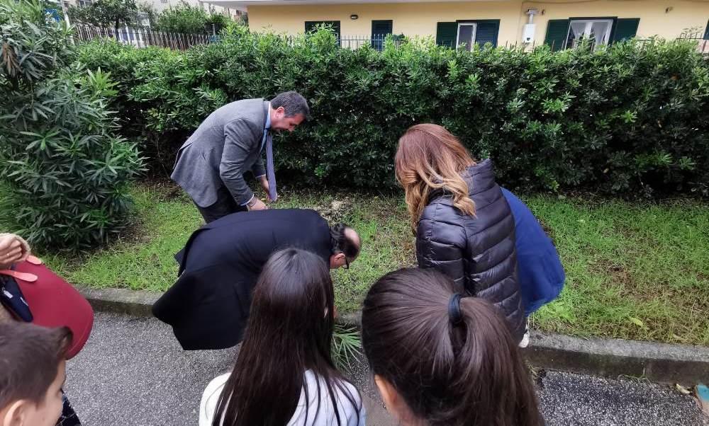 gricignano festa albero 2019 (8)