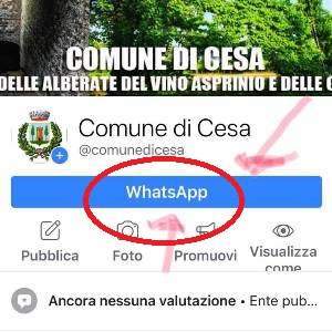 paginafb comune cesa