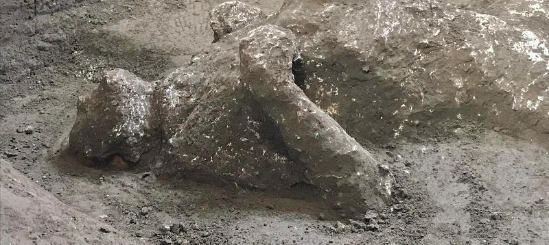 pompei fuggiaschi (2)