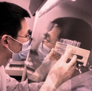 cinesi vaccino