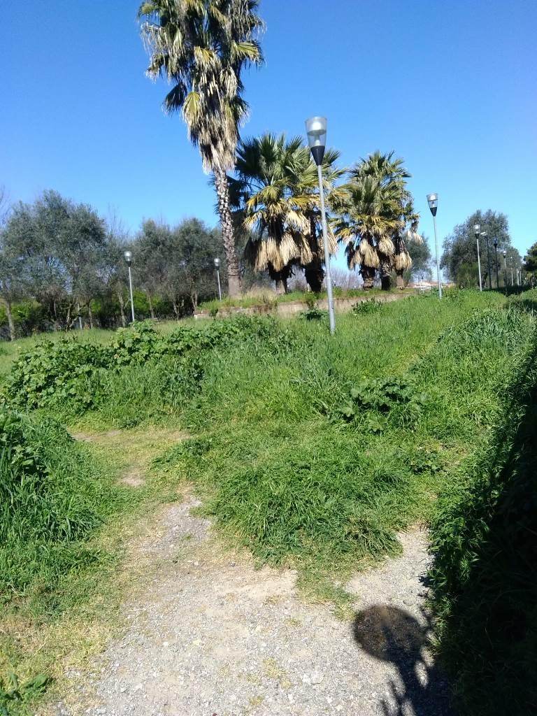 aversa parco grassia (3)