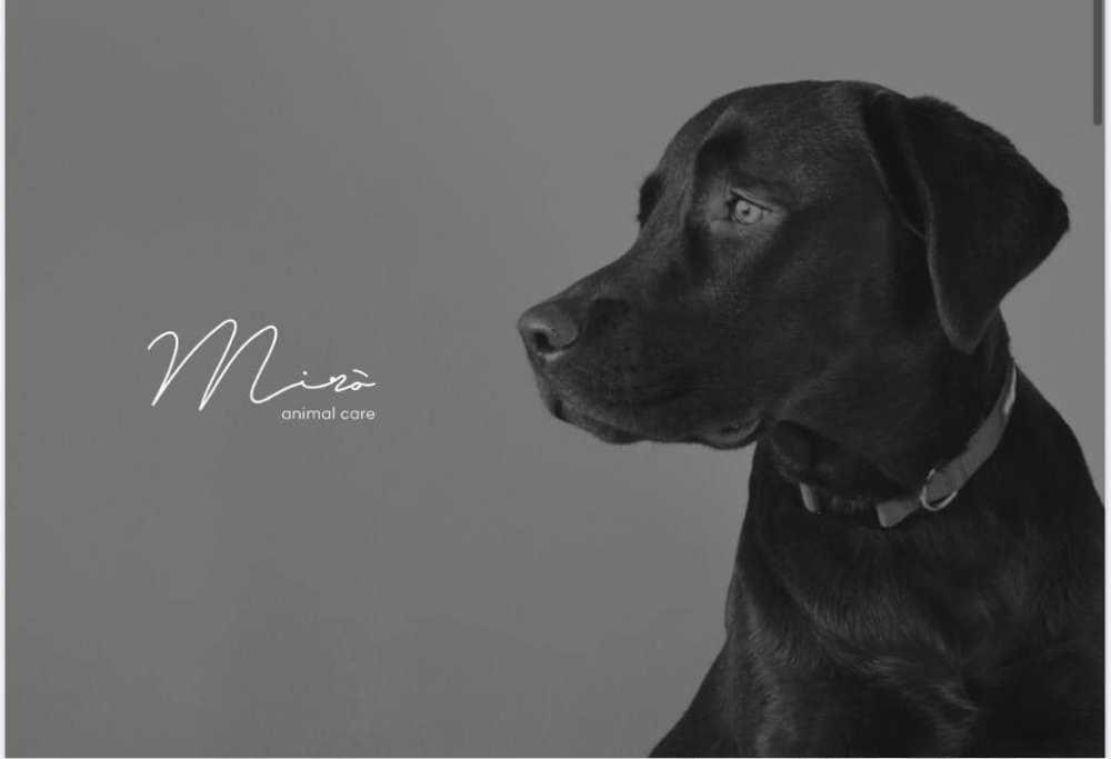 miro animal care (2)