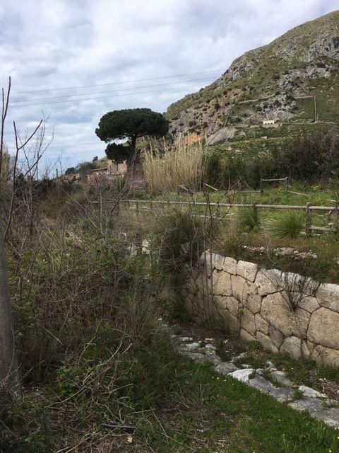 mondragone appia antica rifiuti (13)