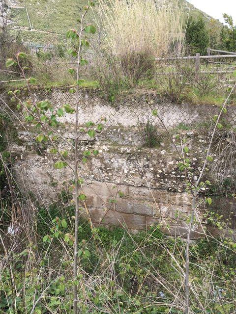 mondragone appia antica rifiuti (14)
